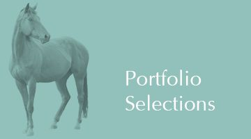 Our eight portfolios outperformed their respective national benchmarks on 47 out of 50 occasions